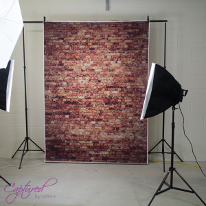 Brick Wall Vinyl Background